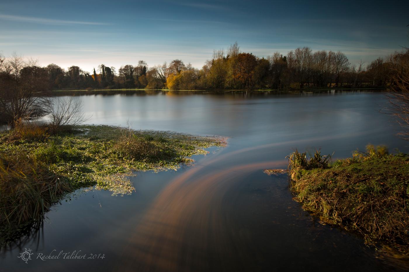 Coxes Mill Pond, Addlestone