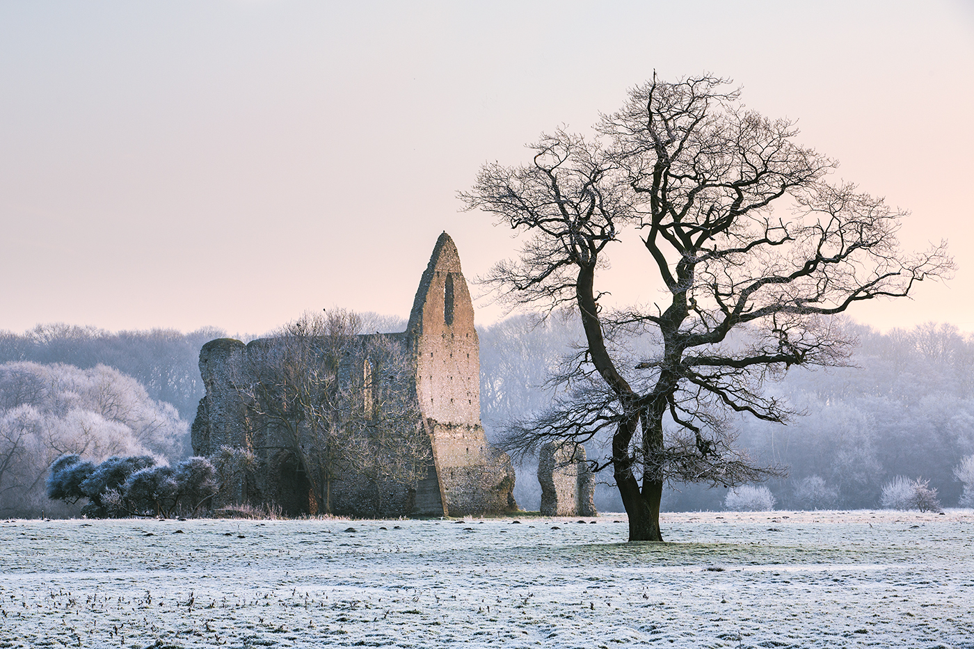 Frosty dawn, Newark Priory