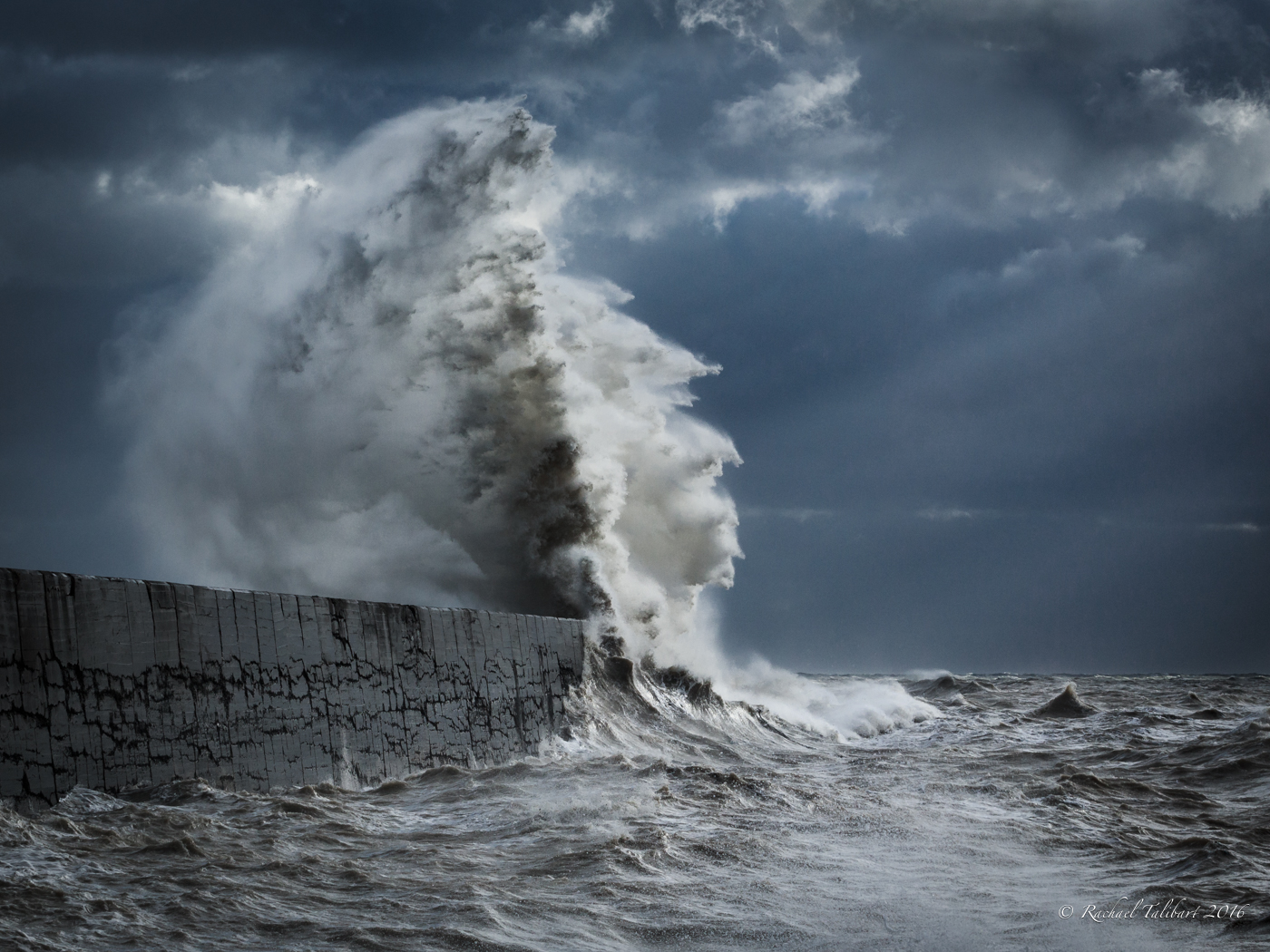 newhaven wave