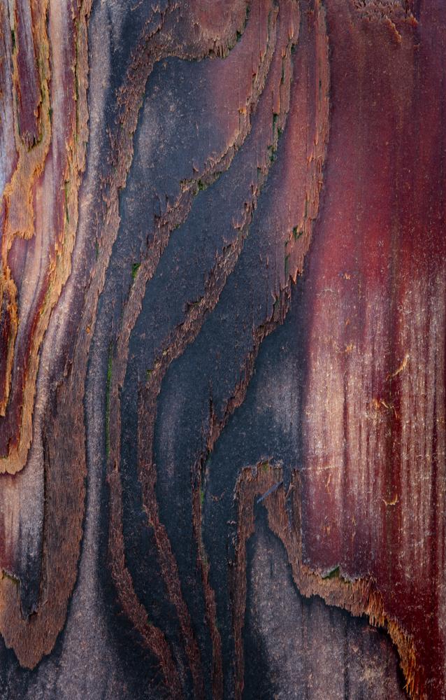 winchelsea grain